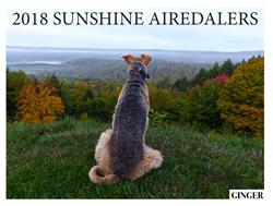 2018 Airedale Calendar